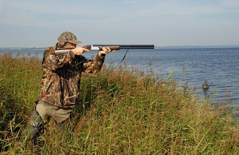Duck hunting tips shooting
