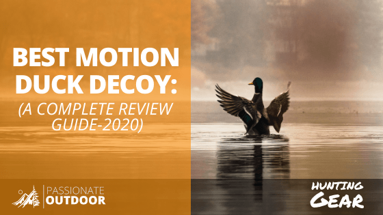 best motion duck decoy