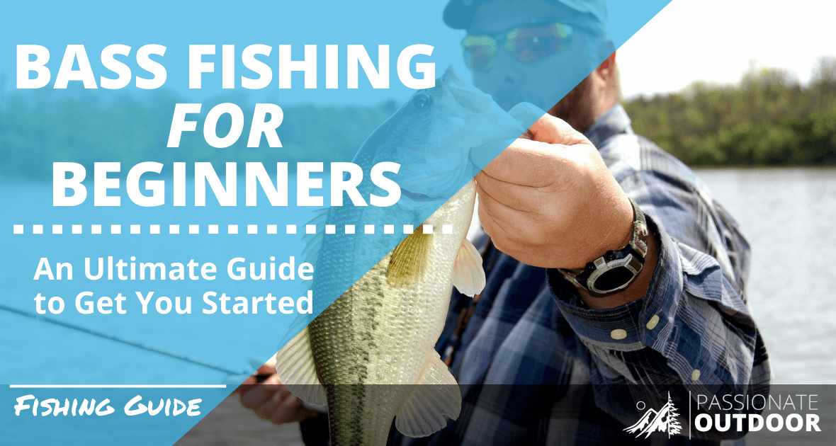 Bass Fishing For Beginners: An Ultimate Guide To Get You Started.